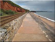 SX9777 : Coast path, Dawlish sea wall by Philip Halling