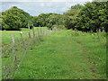 ST1885 : Rhymney Valley Ridgeway Walk near Cefn-Onn farm by John Light