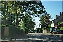 SE4299 : East Harsley by Robin Webster