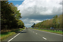 SE4393 : A straight on the A19 by Robin Webster