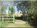 TQ2998 : Footbridge near Enfield by Malc McDonald