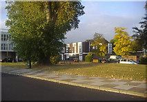 TQ1672 : Croftway from Riverside Drive, Ham by David Howard