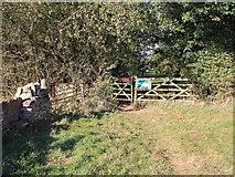 ST8488 : Macmillan Way enters Silk Wood by David P Howard