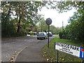 SU4712 : Pinewood Park, Thornhill by Alex McGregor