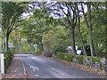 SE7295 : Alder Carr Lane by Pauline E
