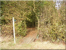 TM3074 : Footpath to Manse Lane, Cratfield by Adrian Cable