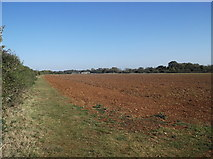 SP2504 : Footpath to Alvescot by andrew auger