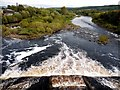 NY9464 : Weir on River Tyne below Hexham Bridge by Andrew Curtis