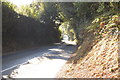 TQ6011 : Lane near Park Wood by Julian P Guffogg