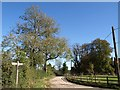 TQ3254 : Pilgrims' Lane at Willey Park Farm by Derek Harper