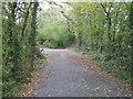 ST5457 : Villice Lane by David Purchase