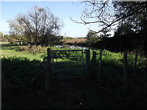 SU2598 : Small gate on the Thames Path at Kelmscott by andrew auger