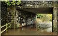 J3067 : Flooding at the Drum Bridge, Dunmurry (5) by Albert Bridge
