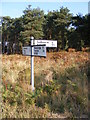 TM3756 : Roadsign on the B1069 Snape Road by Adrian Cable