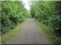 TL3362 : Thorofare Lane by Hugh Venables
