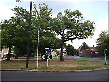 TQ3765 : Roundabout on Bridle Road, Spring Park by David Anstiss