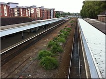 SX9193 : Exeter Central Railway station by Andrew Abbott