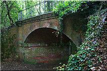 SU4726 : Old railway bridge by David Lally