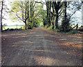 SU0728 : West on the drove by Jonathan Kington