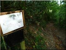 SX8362 : Orange Way in Devon and Torbay (65) by Shazz