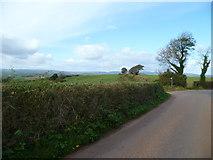 SX8564 : Orange Way in Devon and Torbay (75) by Shazz