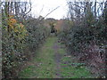 TQ8299 : Footpath north of Woodham Road by Roger Jones