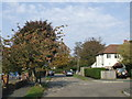 TQ3355 : Park Avenue, Caterham-on-the-Hill by Malc McDonald