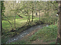 SS8282 : The Afon Cynffig in woodland near Pyle by eswales