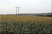 SK5853 : Near Blidworth Dale by Alan Murray-Rust