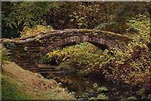 NU0702 : Footbridge, Cragside Estate by Trevor Harris