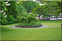 SD3128 : A corner of Ashton Park, St. Annes-on-Sea by P L Chadwick