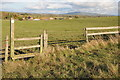 SO8437 : Stile on a footpath near Holdfast Hall by Philip Halling