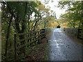 SX5160 : Riverford Viaduct by Derek Harper