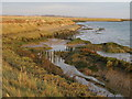 TQ8295 : Crouch river defences and mudflats by Roger Jones