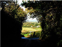 ST7719 : Leaving Marnhull by David Redwood