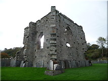 SN1645 : Part of the ruins of St Dogmaels Abbey from St Thomas' churchyard by Jeremy Bolwell