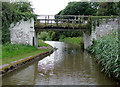 SJ5877 : Bridge No 212 south-east of Dutton, Cheshire by Roger  Kidd