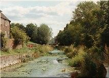 SJ6902 : Coalport Canal by John Winder