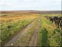 SE1151 : Track leading onto Middleton Moor Enclosure by Chris Heaton