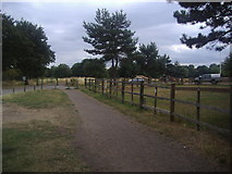 TQ2372 : Path and Windmill Road on Wimbledon Common by David Howard