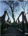NS4660 : Bridge over Gleniffer Burn, Paisley, Scotland by Tom Pattison