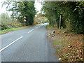 TQ0537 : Bridleway to Bridge Farm by Dave Spicer