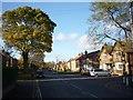 SE6250 : Main Street by DS Pugh