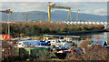 J3775 : East Belfast Yacht Club by Albert Bridge