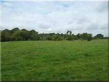 SU6017 : South Downs Society Green Travel Walks Week (157)  by Basher Eyre