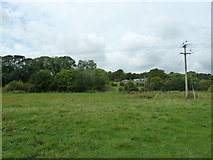 SU6017 : South Downs Society Green Travel Walks Week (164) by Basher Eyre