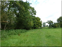 SU6017 : South Downs Society Green Travel Walks Week (167) by Basher Eyre