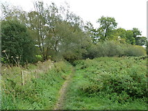 SU6017 : South Downs Society Green Travel Walks Week (173) by Basher Eyre