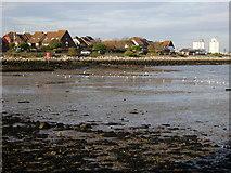 SU4208 : Hythe Marina Village by Val Pollard