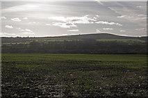 SW6132 : Towards Godolphin Hill by Ian Capper